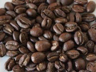 Espresso Forte 1000 g